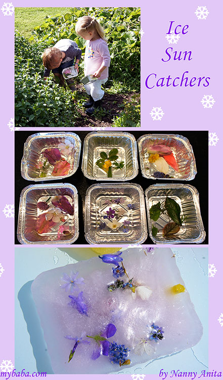 Ice sun catchers - pre school science and craft activity.