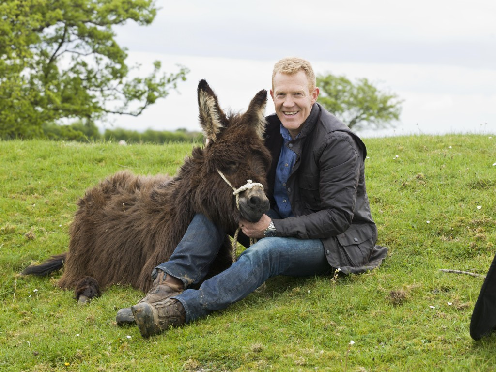 0514 Adam with donkeys (14)