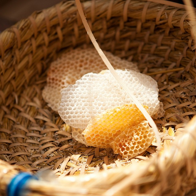 Can't wait to learn all about #beekeeping @daylesfordfarm tomorrow. #harvestfestival here we come, fun for the whole family and a great day out! Check out their website or #mybaba for all info #healthyseptember