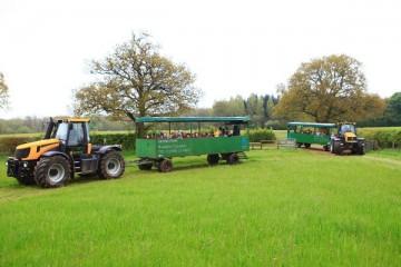Daylesford Harvest Festival