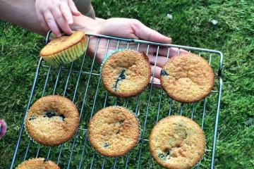 The Food Stork's Blackberry, Lemon & Maple Syrup Tea Cakes
