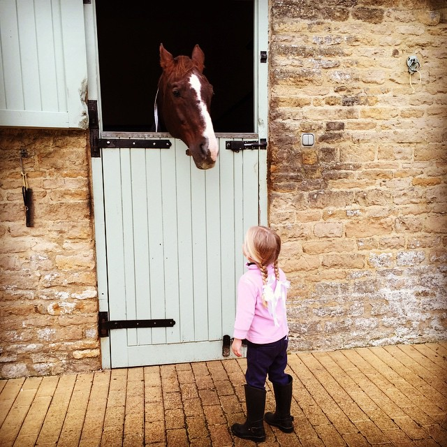 Deep in conversation with her good friend. #stables