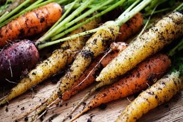 How to Create an Edible GardenHow to Create an Edible Garden