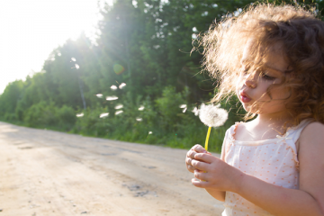 5 Natural Remedies to Help Alleviate Symptons of Hayfever