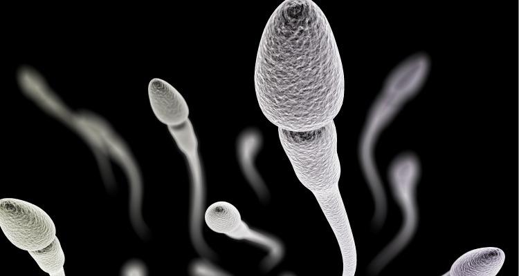 semen-analysis