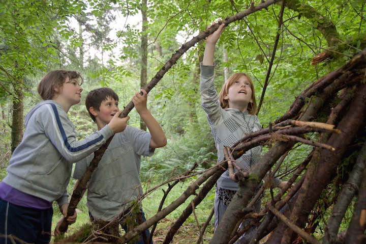 Wild Learning Holiday Club
