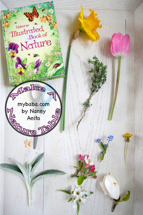 What better way for kids to learn about nature than to have a nature table were they can dissect flowers and look at them closely with a magnifying glass.