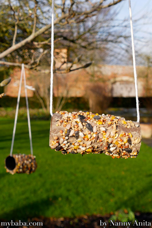 Use the inside of a loo roll to make a bird feeder. Help give nature a home.