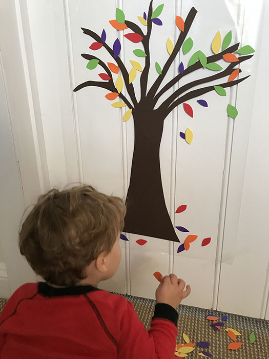 autumn tree activity