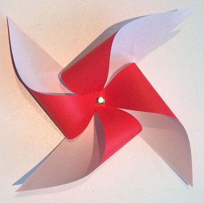 pinwheel poppies