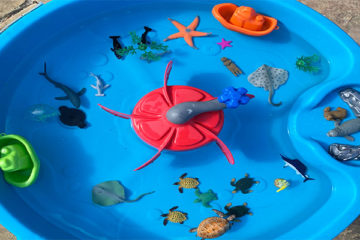sea creatures sensory tray