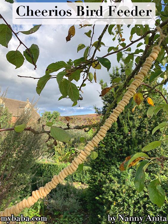 Make a taste treat for your garden birds with this Cheerios bird feeder.
